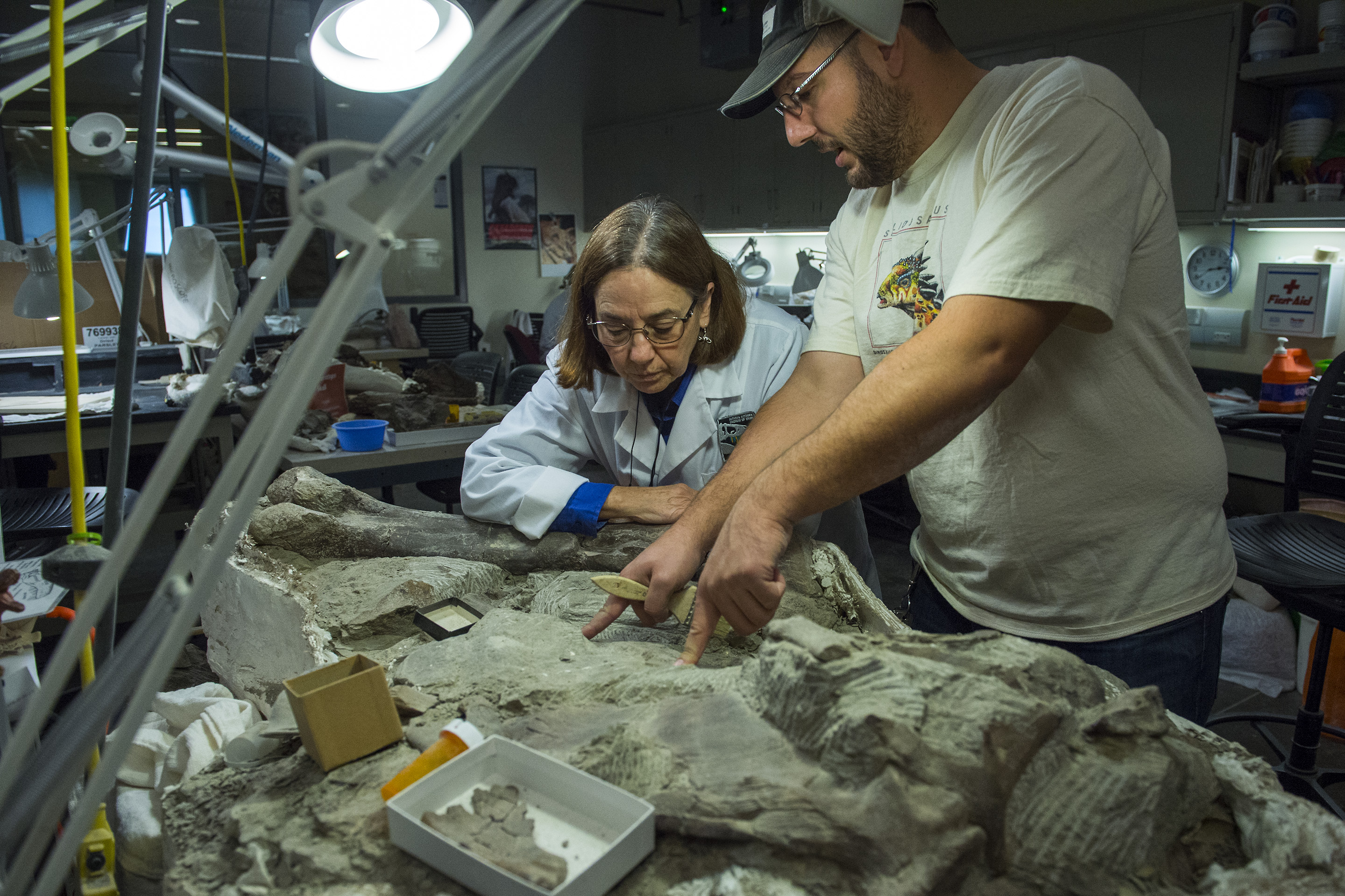 Scientists decry Trump's move to strip fossil treasures from Utah's Grand Staircase monument