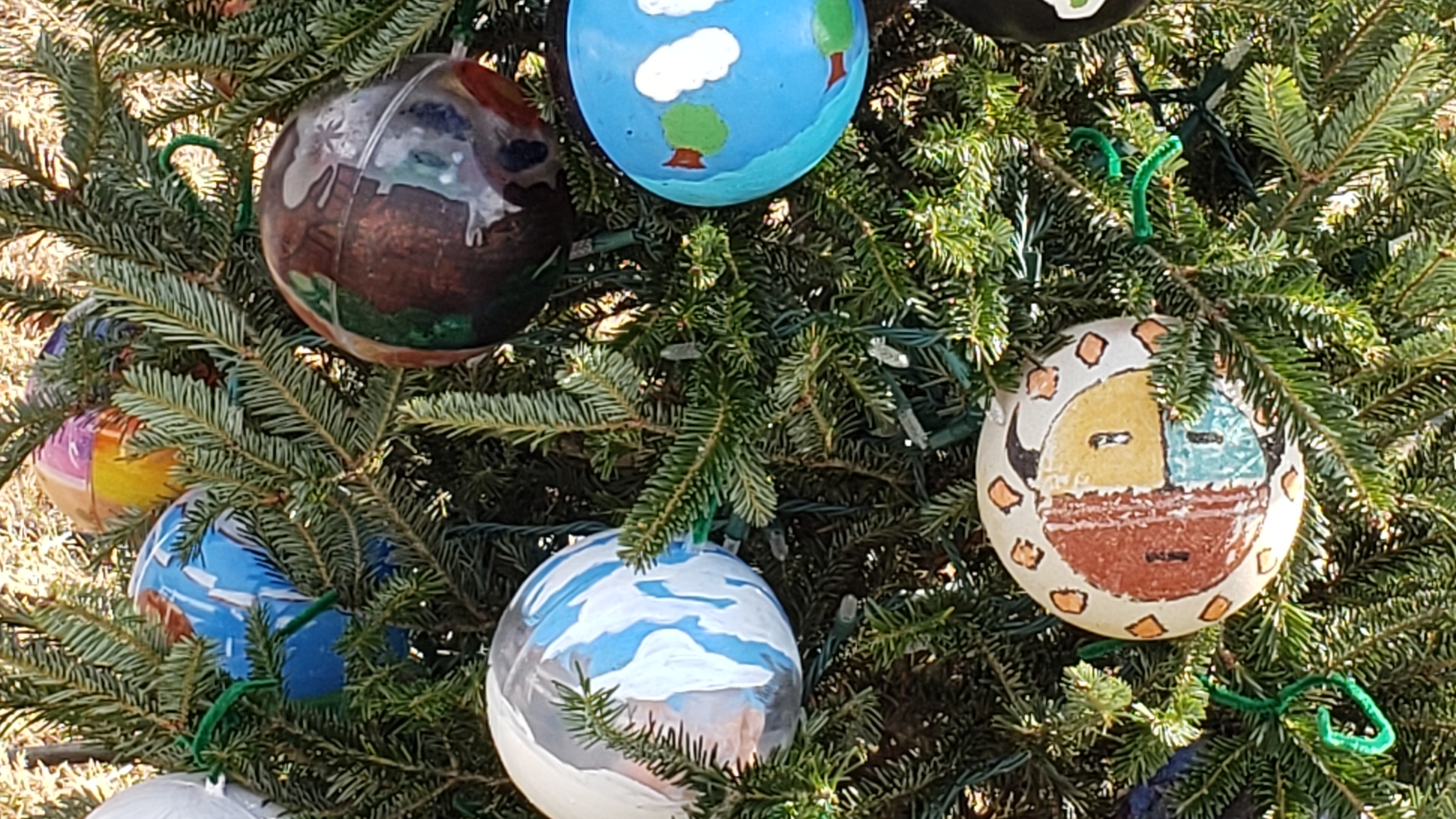 Navajo Students Painted Ornaments That Represent Their Culture For Utah S Tree Across From White House